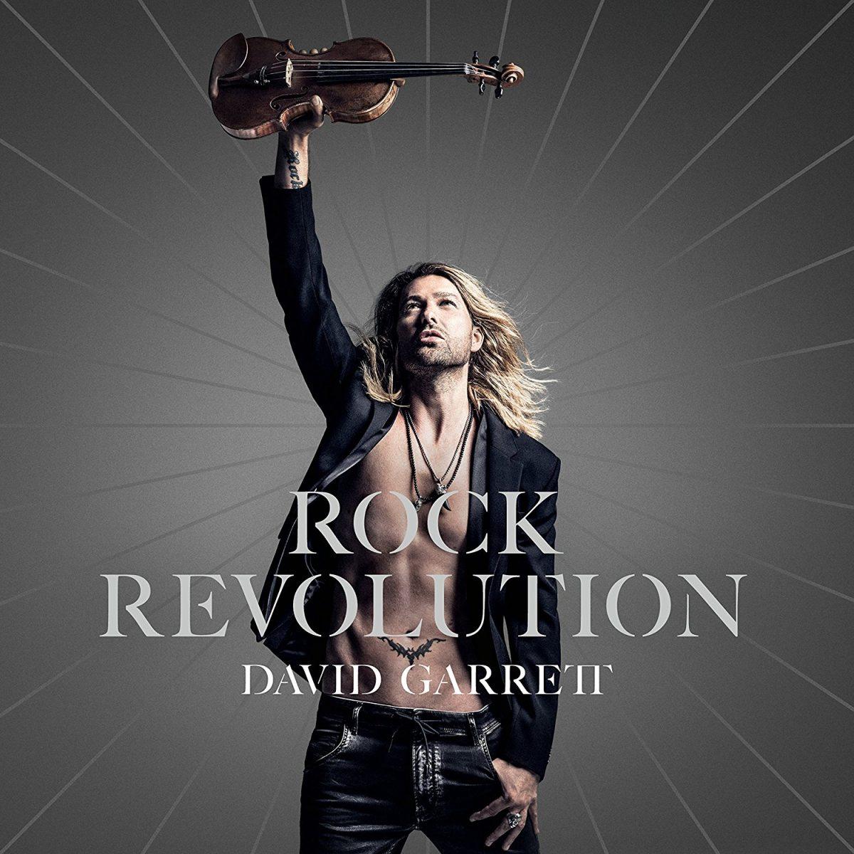 David Garrett Von Der Evolution Zur Revolution David Garrett