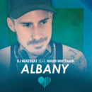 """DJ HERZBEAT feat. ROGER WHITTAKER <br>Der Hit """"Albany"""" erstrahlt in neuem Glanz!"""